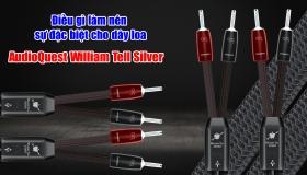 Điều gì làm nên sự đặc biệt cho dây loa AudioQuest William Tell Silver | AudioHanoiTV số 291