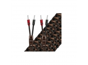 Dây loa AudioQuest Type 5