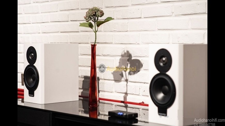 loa Dynaudio XEO 20 chat