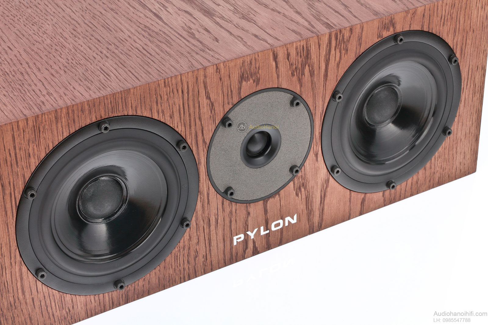 Pylon audio diamond center can canh